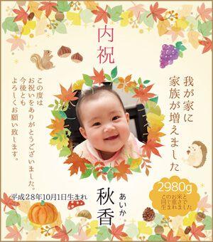 出産内祝い体重米デザイン 秋の実り