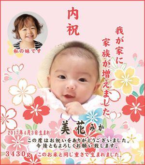 出産内祝い体重米デザイン 新作 チェリーブロッサム