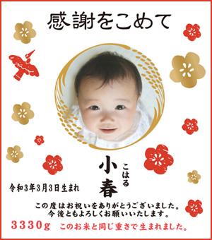 出産内祝い体重米デザイン 感謝をこめて