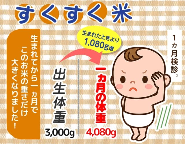 1ヵ月で増えた体重のすくすく米