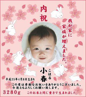 出産内祝い体重米デザイン さくらと兎 もも色