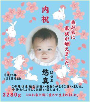 出産内祝い体重米デザイン さくらと兎 空色