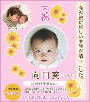 出産内祝い体重米デザイン ひまわり(ピンク)