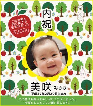 出産内祝い体重米デザイン 森のくまさん